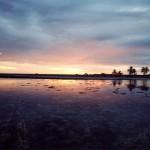 Sunset - Tikehau