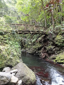 Le pont de la Fautaua