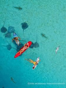 Vol au dessus des raies et requins © Tahiti Fly Shoot