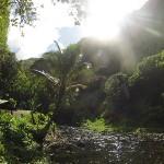 Rivière bordant le refuge - Randonnée Te Pari