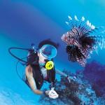 Scuba diving Bora Bora